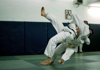 judo_io